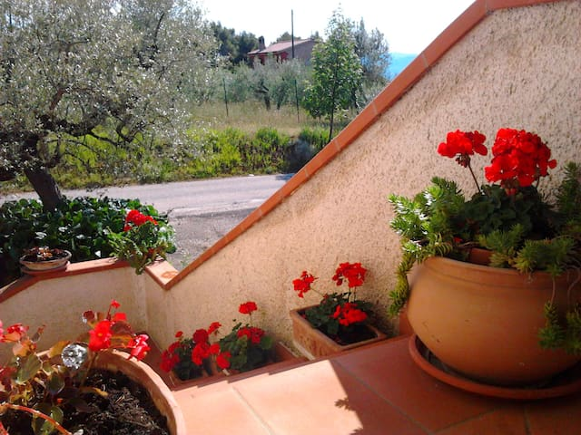 """""""Il Mulinetto"""" casa vacanze - Canalicchio - House"""