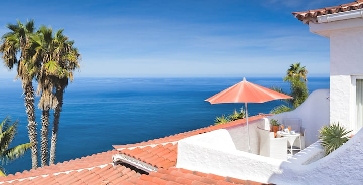 Junior Suite with Private Rooftop Terrace with Sea View