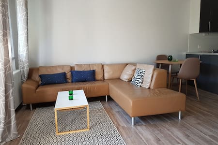 A Large Studio Apartment with Garden Near the Lake