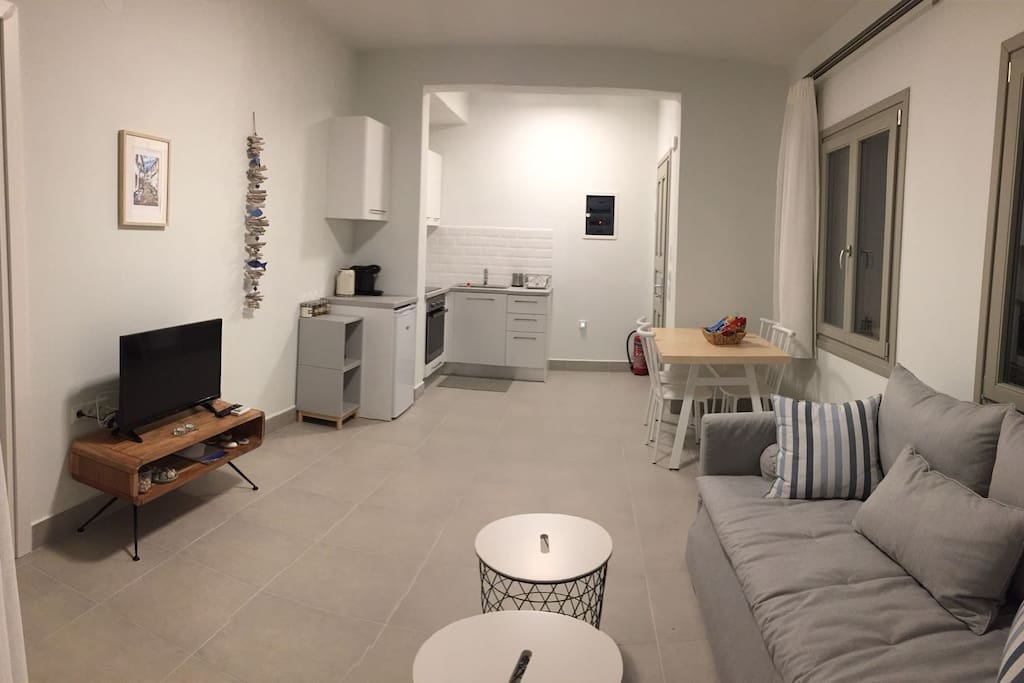 An open space with the fully equipped kitchen, the dining area and the living room with the double sofa bed