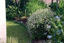 Gorgeous private garden courtyard