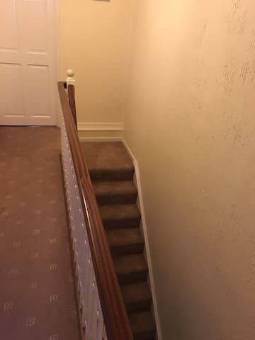 Lovely single room available