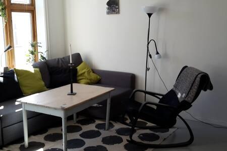 Nice flat in central Grünerløkka - Oslo - Appartement