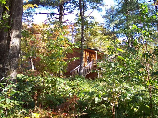 Cozy forest cabin on secluded, quiet lake - Parry Sound - Cabin