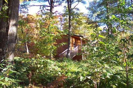 Cozy forest cabin on secluded, quiet lake - Parry Sound - 小木屋