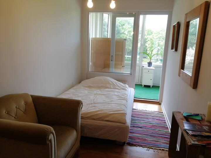 2 Hyggelige værelser med masser af lys i Herning N