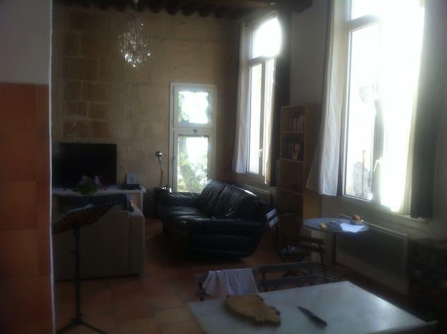 Belle chambre avec vue sur le Rhône - Arles - Byt