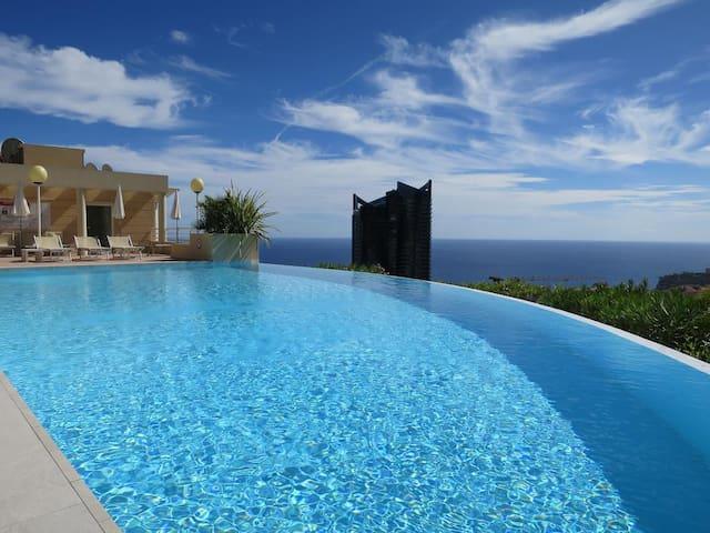 Splendid apartment overlooking Monaco
