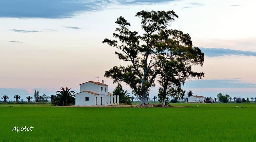 Casa típica rural en los arrozales - Deltebre - Huis
