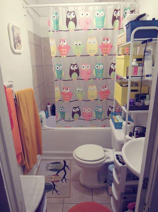 Salle de bain pleine de hiboux! :)