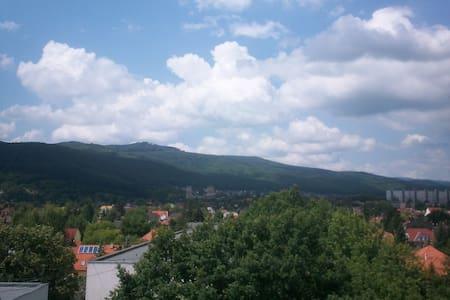 Kilátással a Diósgyőri várra - Miskolc