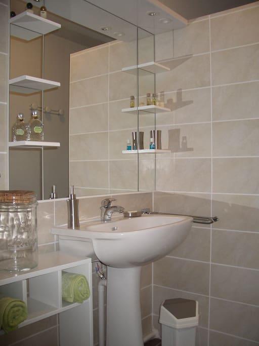 une confortable salle de bain avec douche lavabo, sèche serviette, gel douche et shampoing,sèche cheveux, wc séparés