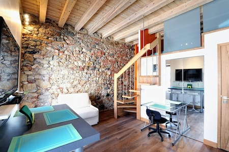 "TAKE ME HOME STUDIO LOFT ""LE CYGNE "" - Annecy"