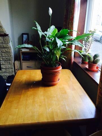 Central small single room in CB1 - Cambridge - Talo