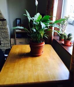 Central small single room in CB1 - Cambridge