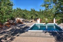 Olive - Pool, Jacuzzi - Tvrdic Honey Farm