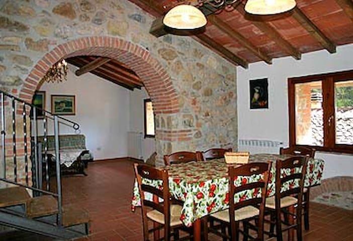 rustico tipico stile toscano - Capanne - Apartamento