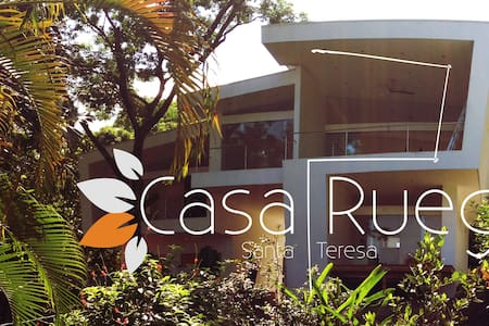 Casa Ruego jungle view