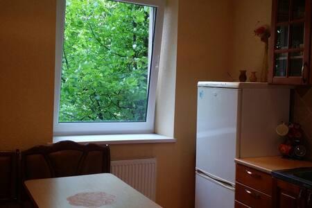 Cozy apartment with big balcony - Šilutė