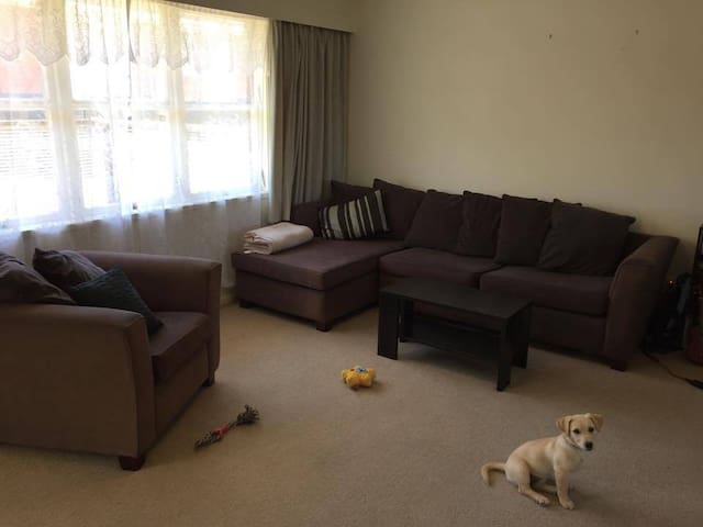 Cozy Home Near Beach & With Friendly Puppy! - Auckland - Byt