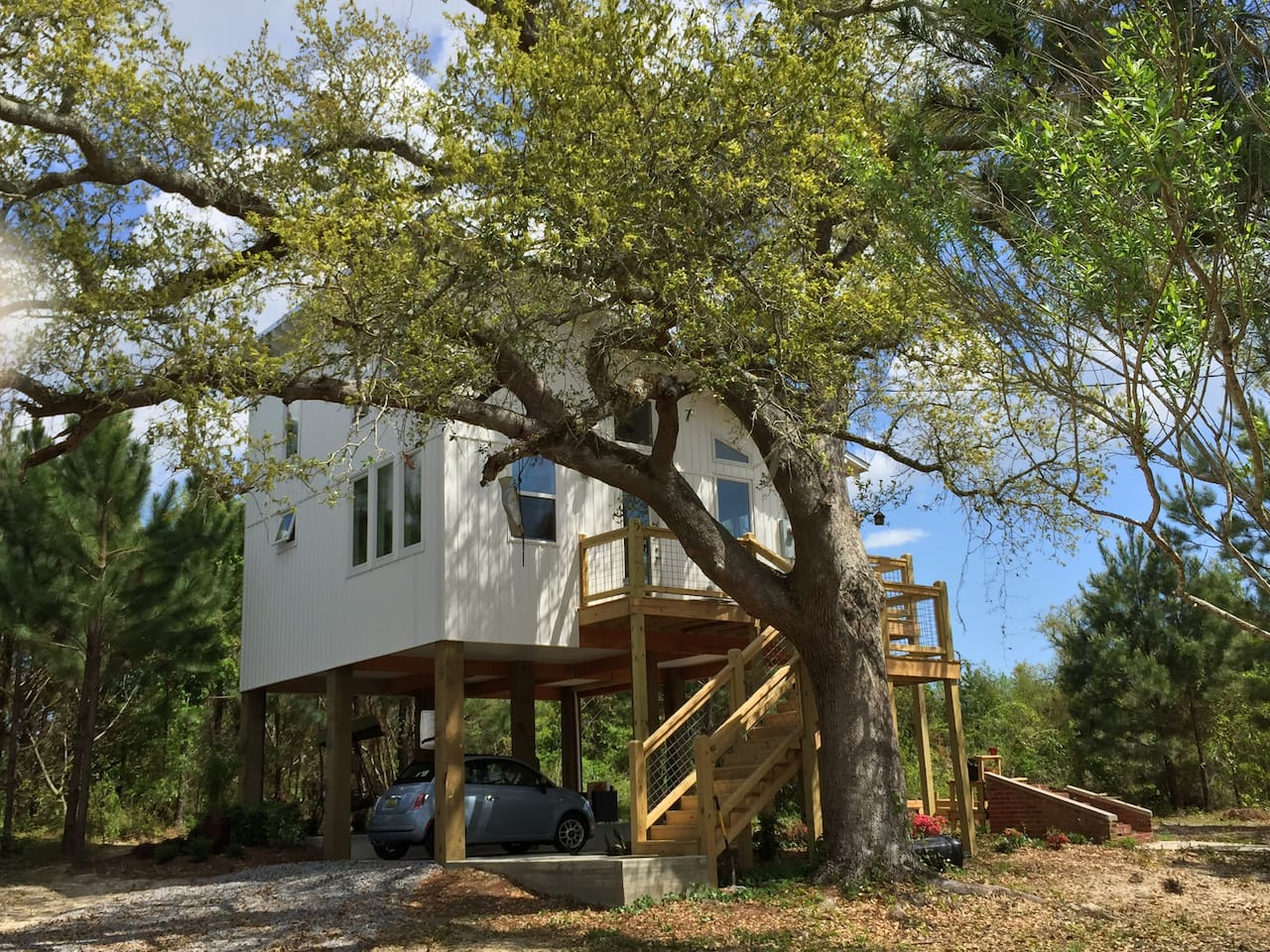 ECO Beach House nestled in a 100+ yr old Live Oak