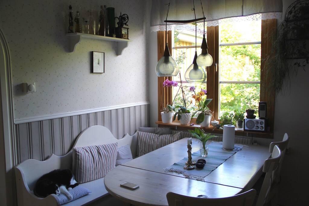 Köket med  stort köksbord