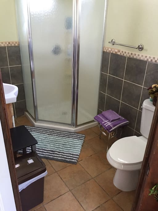 Spacious bathroom with a standup shower.