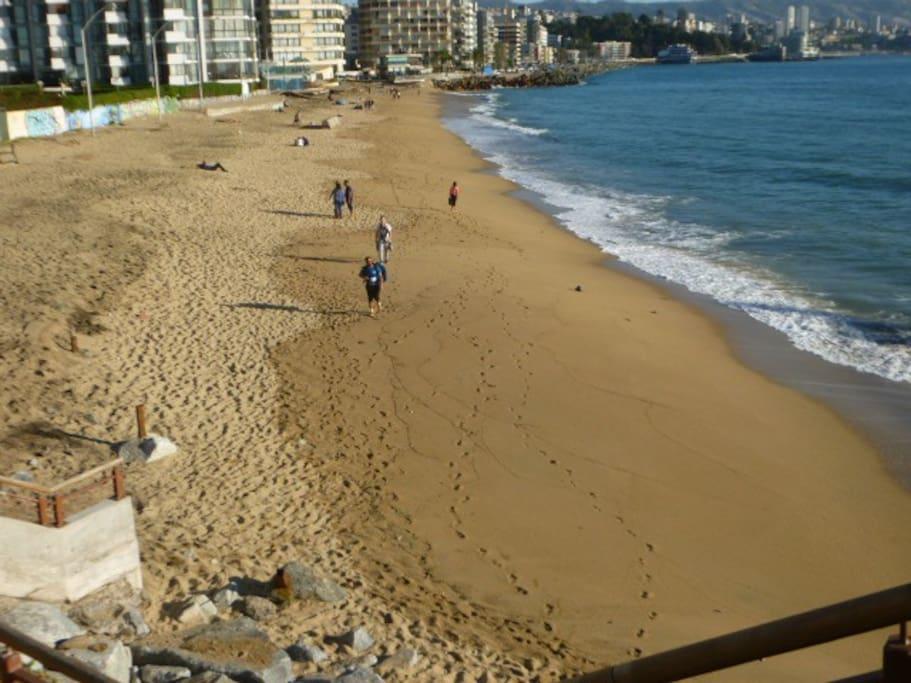 Playa Acapulco (lado Sur Muelle Vergara).