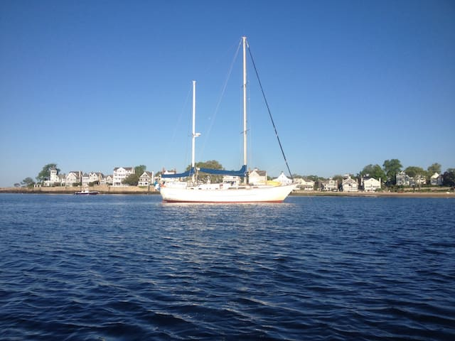 Big Beautiful Sailboat, double berth private cabin - Vineyard Haven, Martha's Vineyard  - Boot