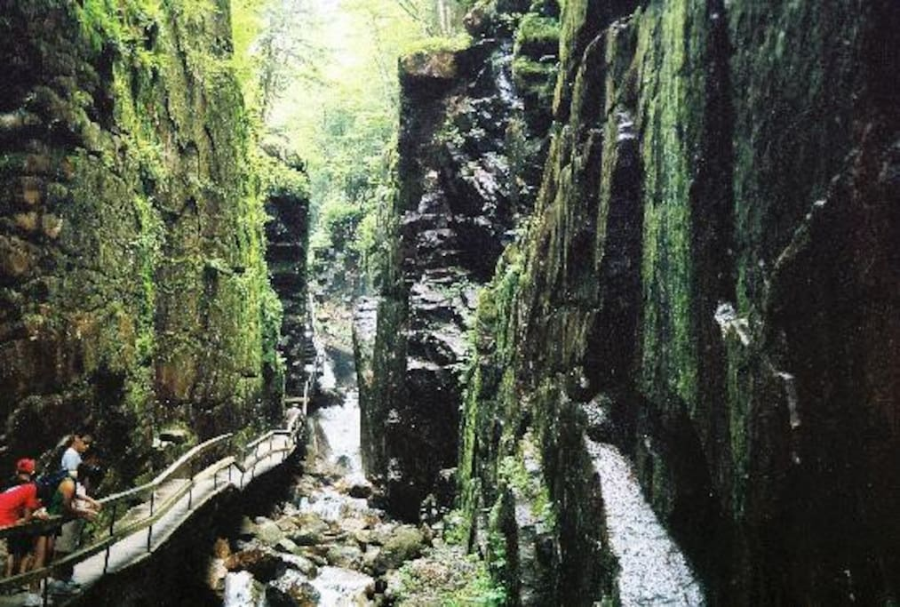 Don't forget to visit the flume gorge just minutes away from our townhouse