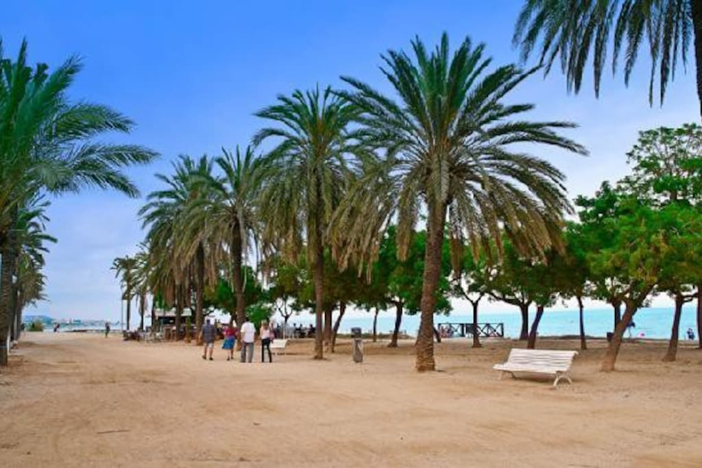 Playa de Mataró