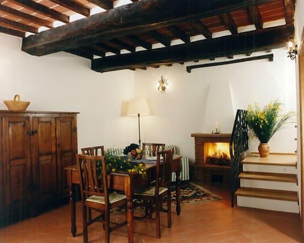 Antica villa edera - Arezzo - Apartament