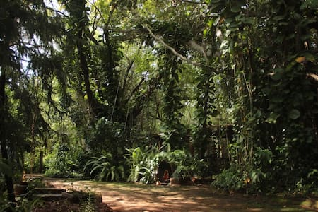 A family room in Auroville - Bommayapalayam - Bed & Breakfast
