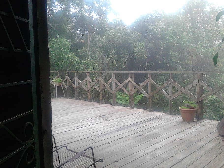 Deck at the back