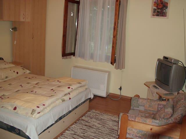 Zalakaros Kis apartman - Zalakaros - Flat