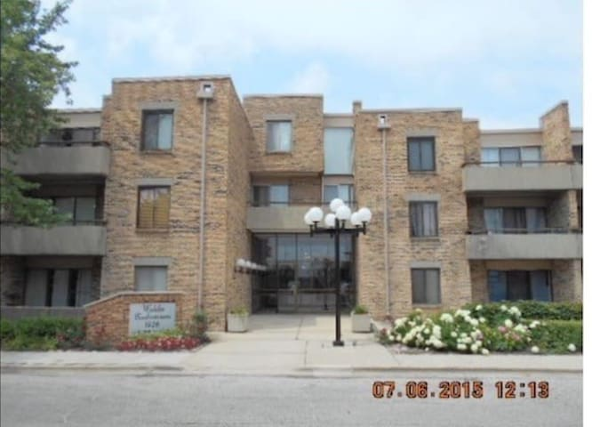 Chicago best apartment !!! - Schaumburg - Condominium