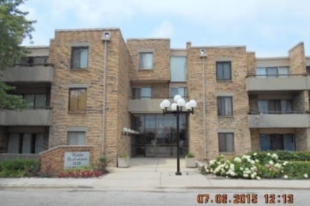 Chicago best apartment !!! - Шаумбург