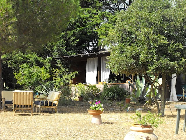 Quiet wood house in Tuscany - Piombino - Lomamökki
