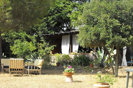Quiet wood house in Tuscany - Piombino - Chalet