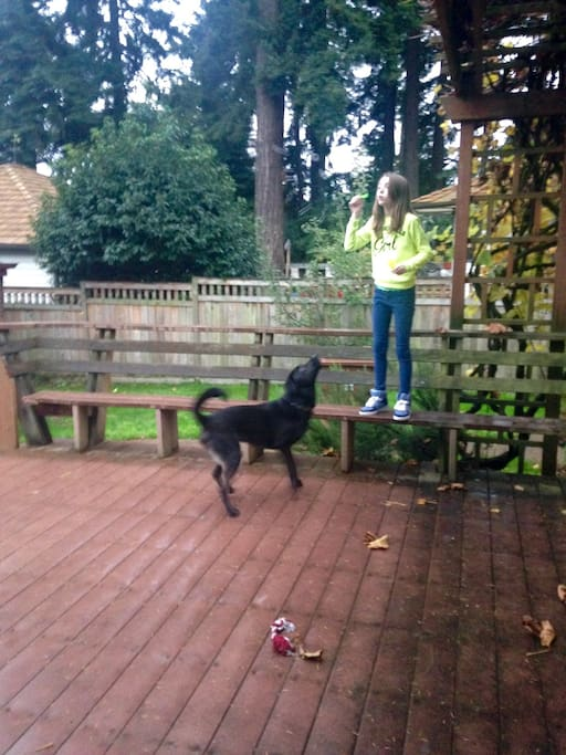 Deck, rambunctious dog and child