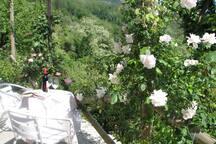 Podere la sosta della Rondine . The gardeners apt