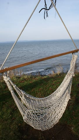 A beach swing, just for you to cozy up in and read a book