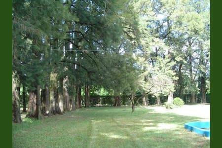 Un lugar especial cerca de la naturaleza - Luján - Guesthouse - 2