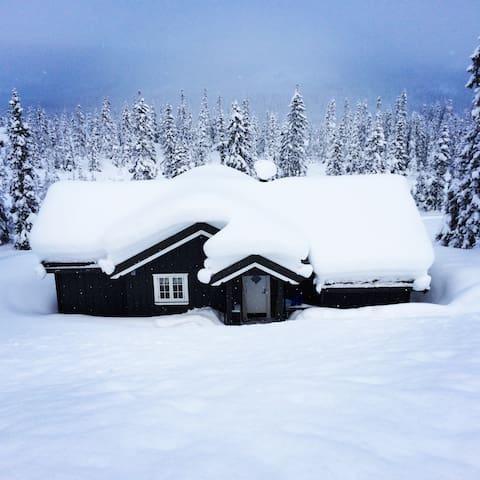 Flott familiehytte Kvitfjell Vest