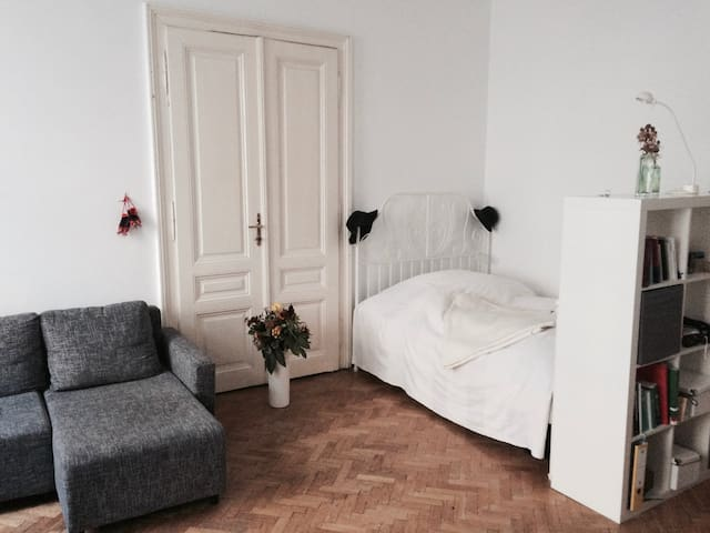 Beautiful Room in the Heart of Vienna - Viyana - Daire