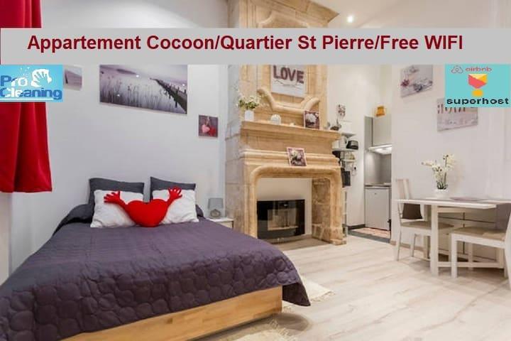 Charming Apartment / Rue Des Faussets / St Pierre