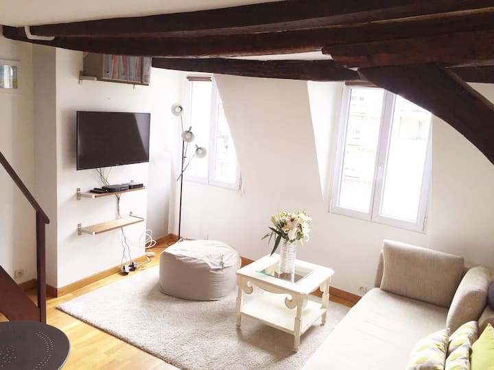 Charming duplex Le Marais+free private car park !