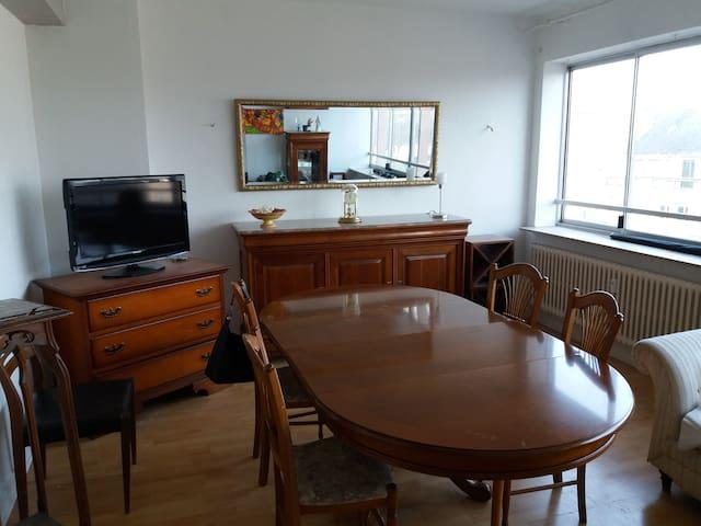Lumineux grand appartement hyper centre Thionville