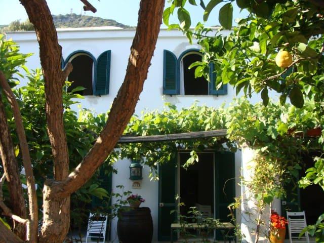 Casa del Sole - San Felice Circeo - Apartmen
