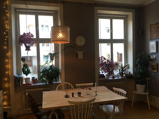 Apartment in centrally located 1890's house
